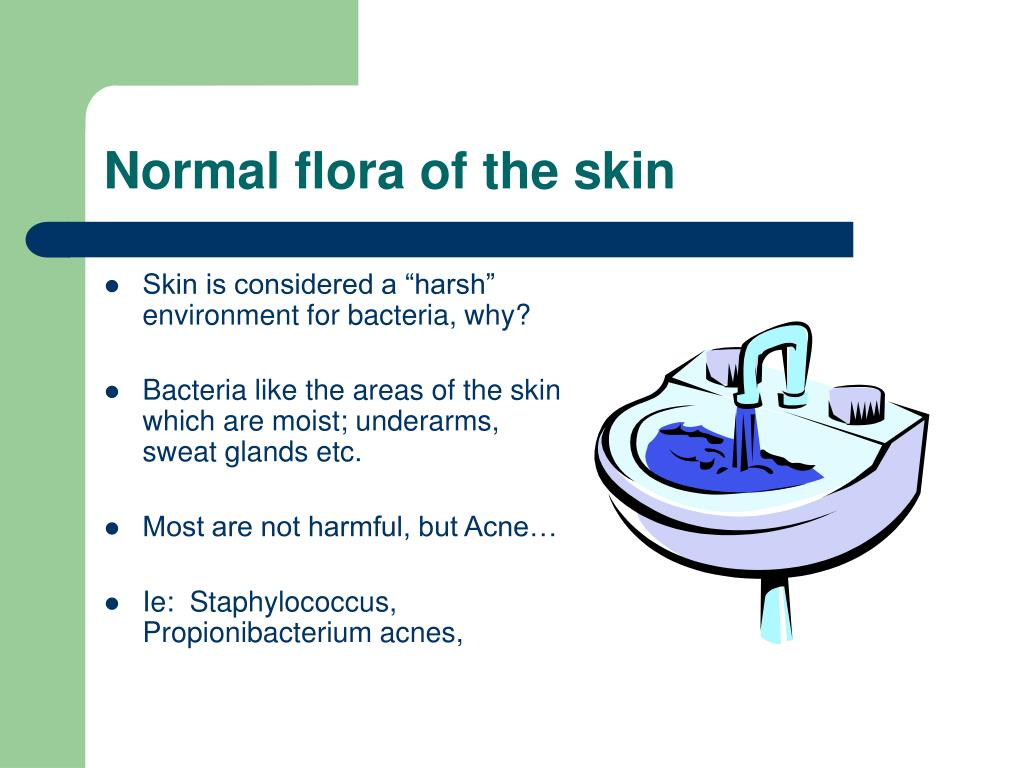 Normal flora of the skin