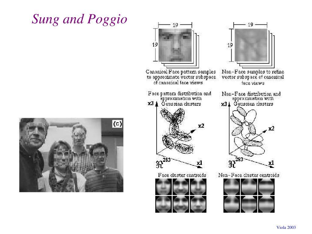 Sung and Poggio