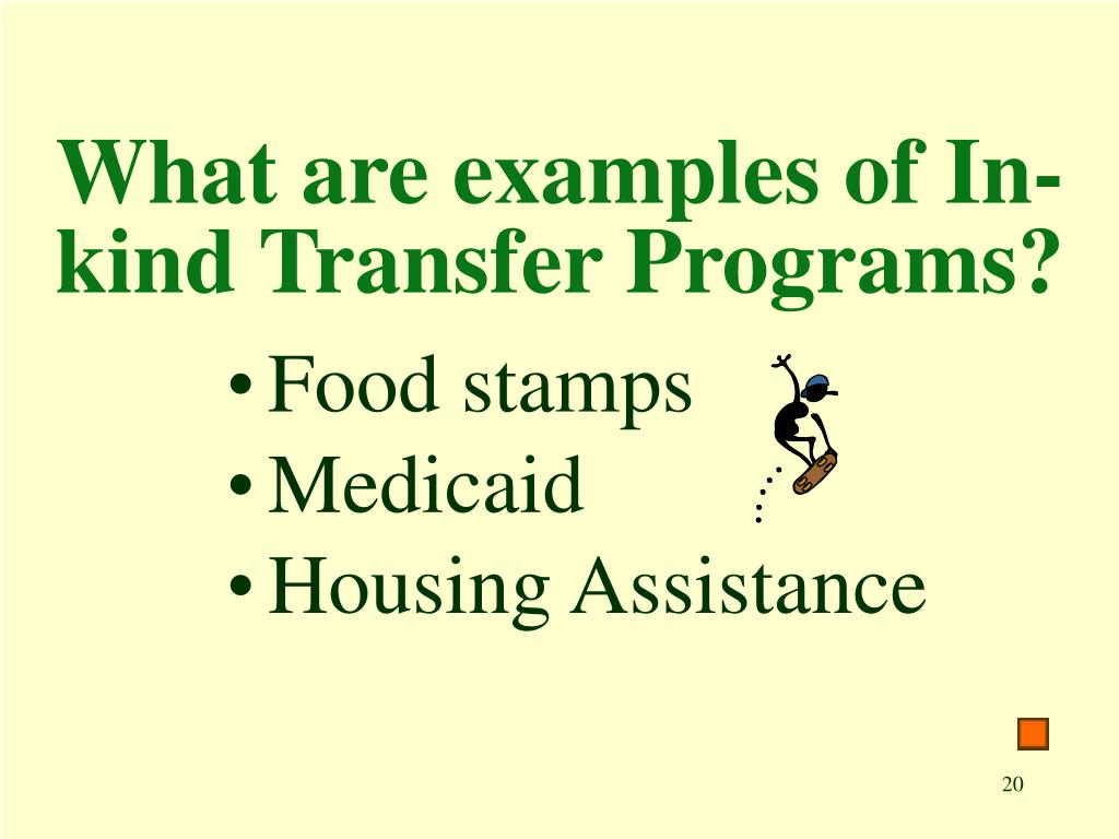 What are examples of In-kind Transfer Programs?