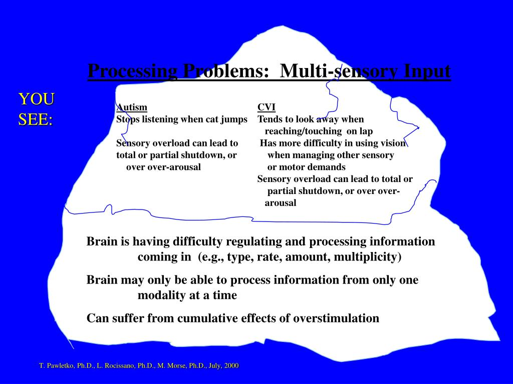 Processing Problems:  Multi-sensory Input