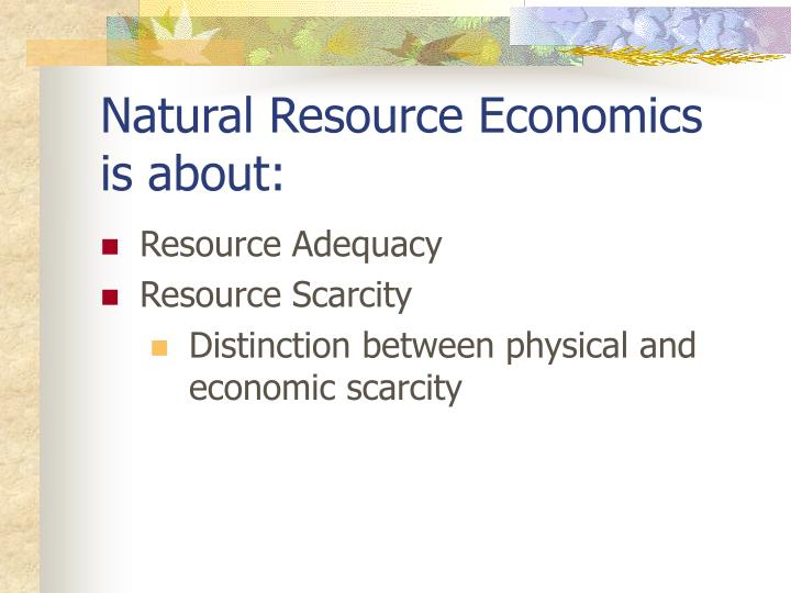 Natural resource economics is about