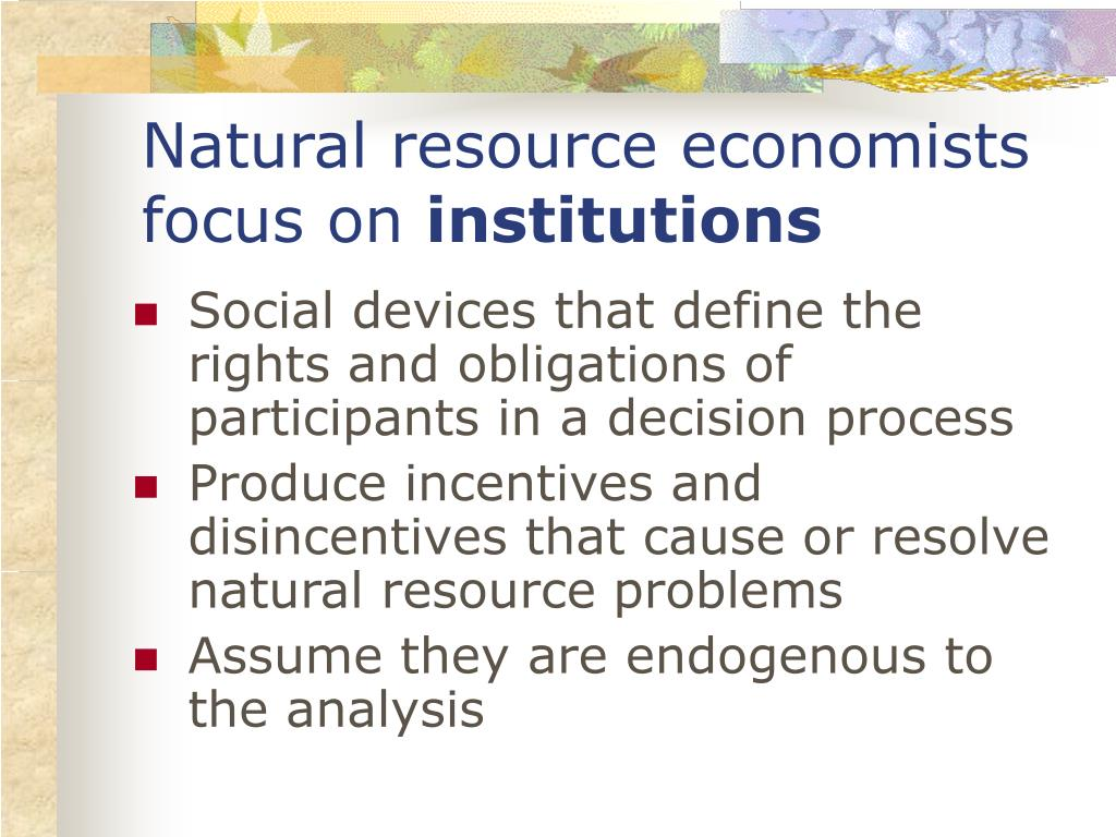 Natural resource economists focus on