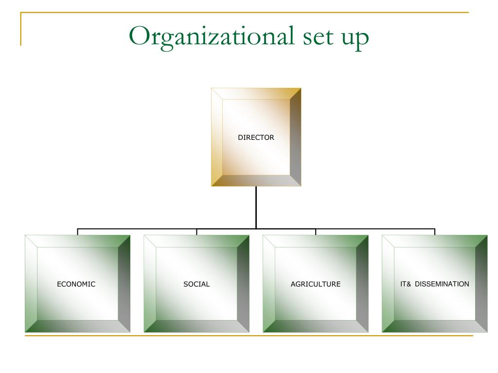 Organizational set up