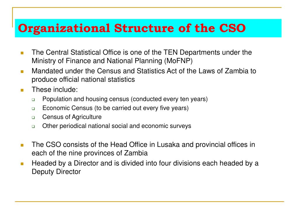 Organizational Structure of the CSO