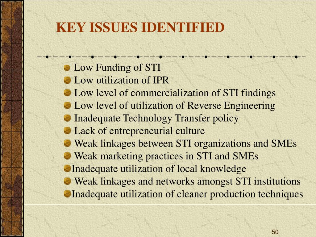 KEY ISSUES IDENTIFIED
