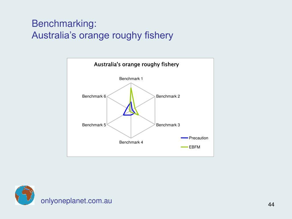Australia's orange roughy fishery