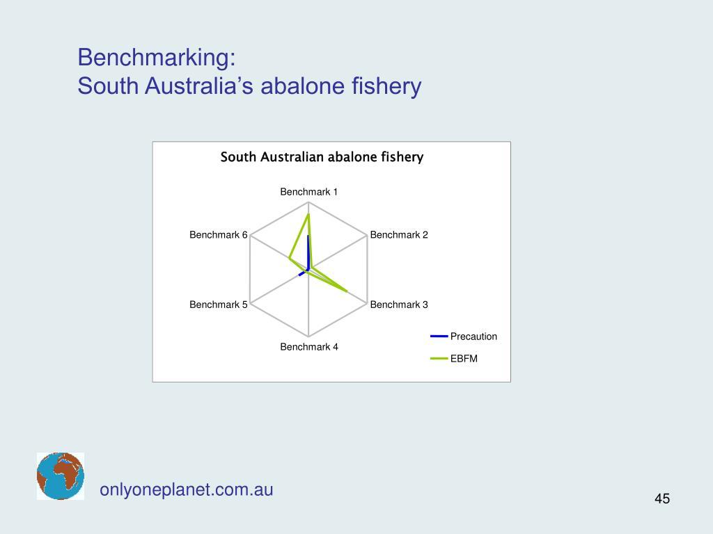 South Australian abalone fishery