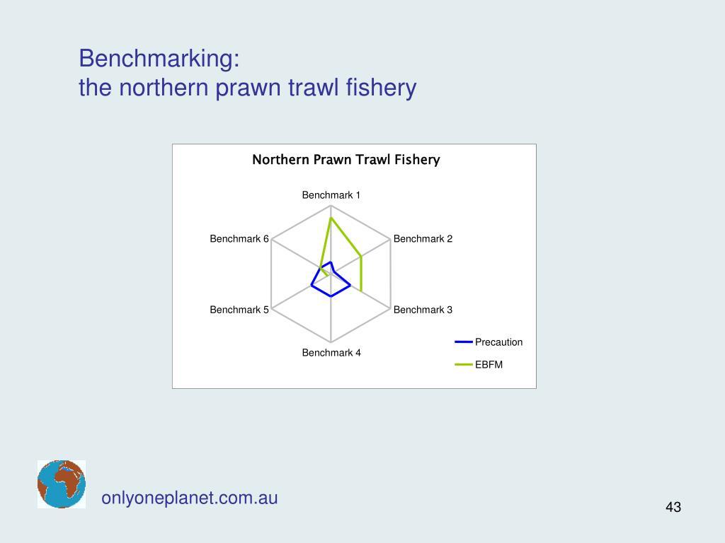 Northern Prawn Trawl Fishery