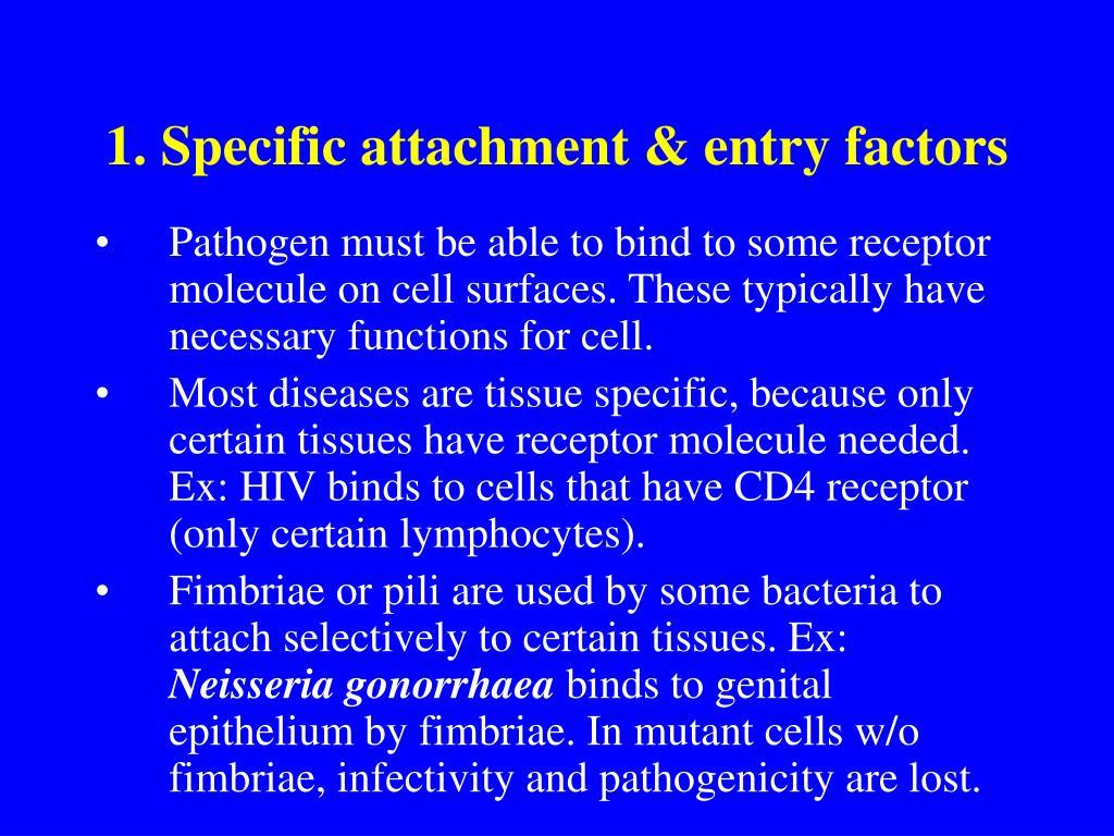 1. Specific attachment & entry factors