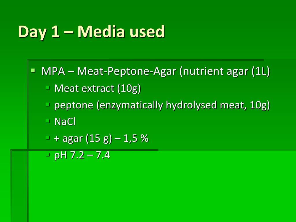 MPA – Meat-Peptone-Agar (nutrient agar (1L)