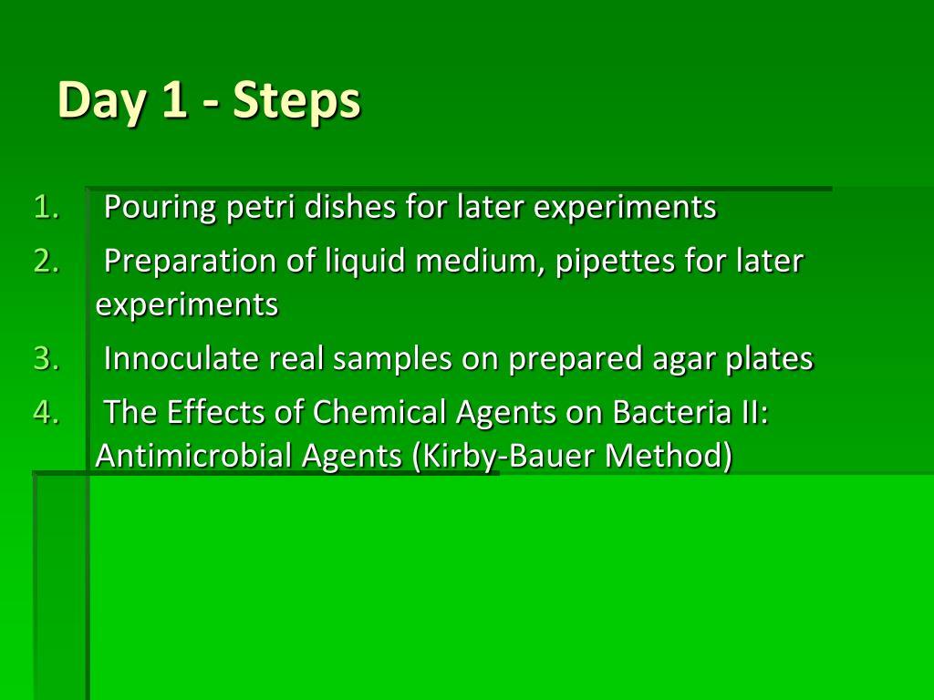 Day 1 - Steps