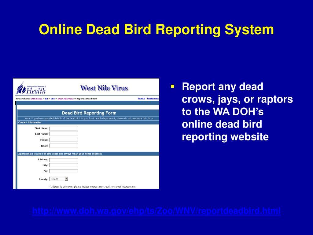 Online Dead Bird Reporting System