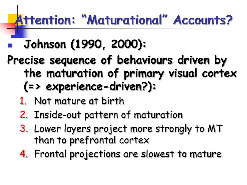 """Attention: """"Maturational"""" Accounts?"""