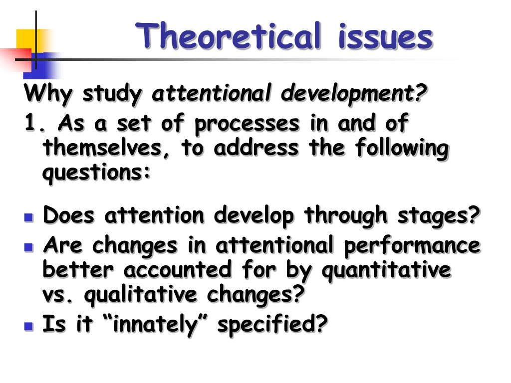 Theoretical issues