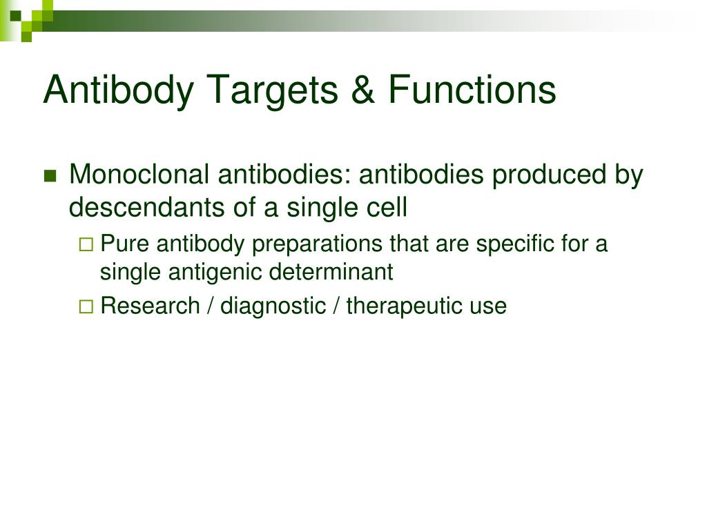 Antibody Targets & Functions