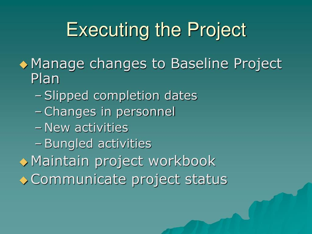 Executing the Project