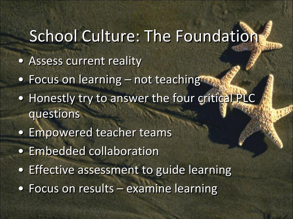 School Culture: The Foundation