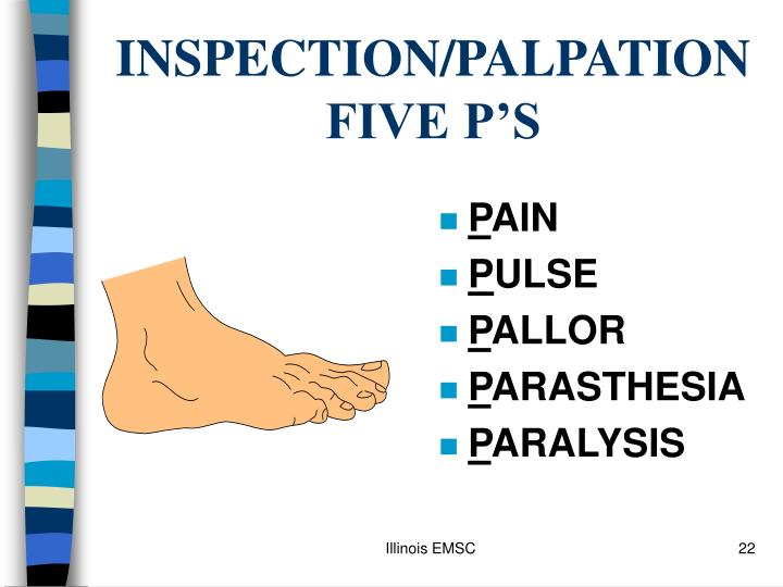 INSPECTION/PALPATION FIVE P'S