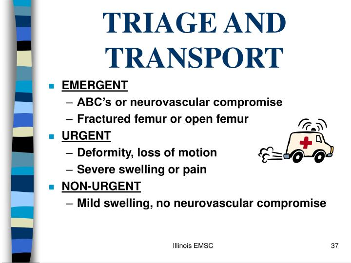 TRIAGE AND TRANSPORT