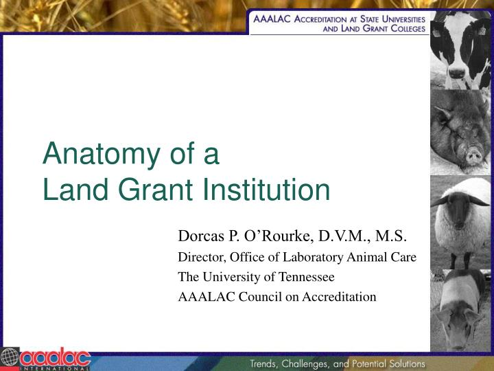 Anatomy of a land grant institution