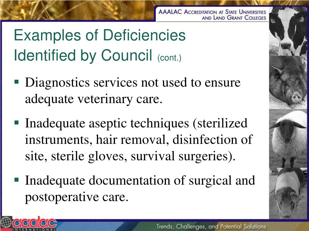 Examples of Deficiencies