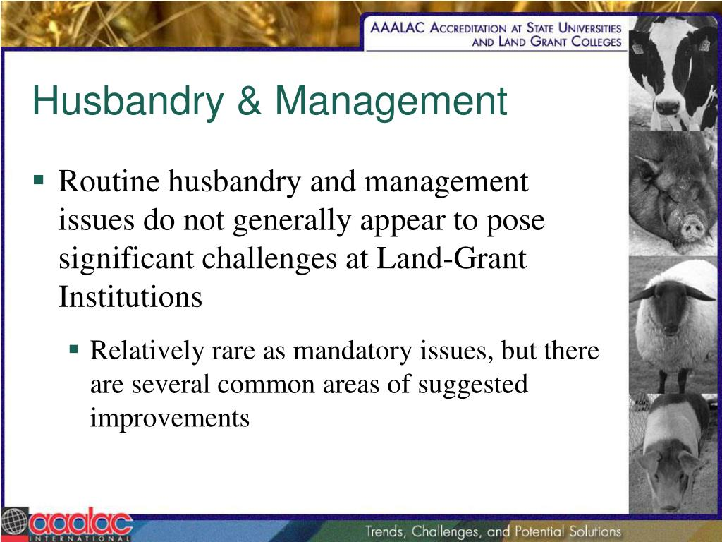 Husbandry & Management