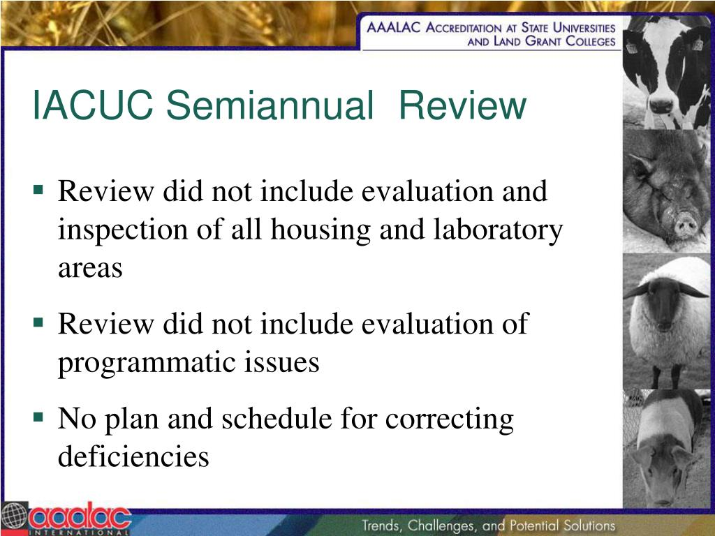 IACUC Semiannual  Review