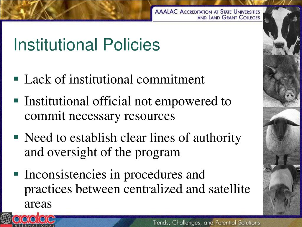 Institutional Policies