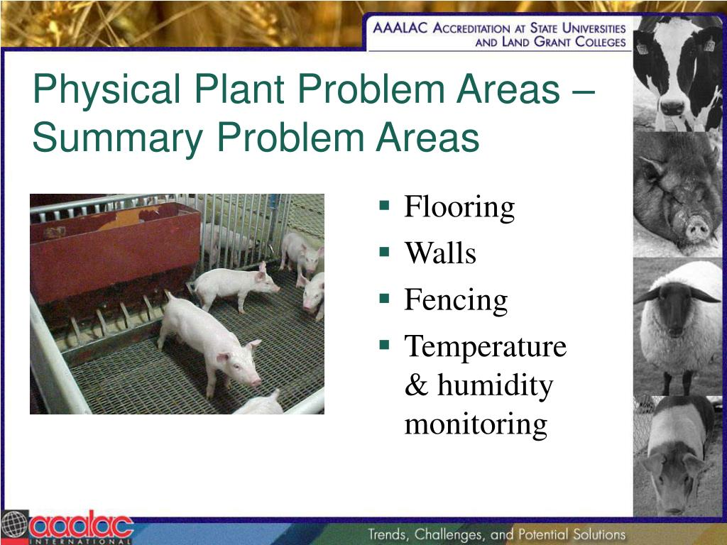 Physical Plant Problem Areas – Summary Problem Areas