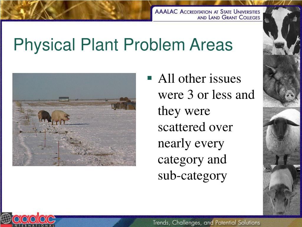 Physical Plant Problem Areas