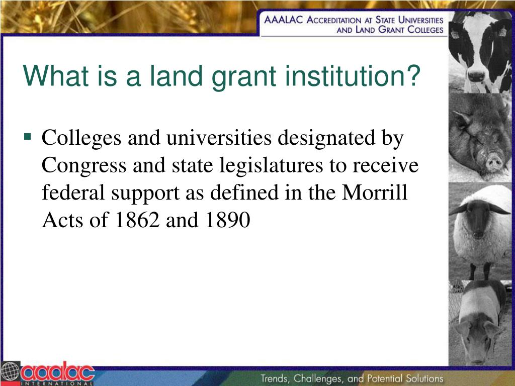 What is a land grant institution?