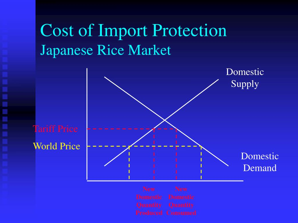 Cost of Import Protection