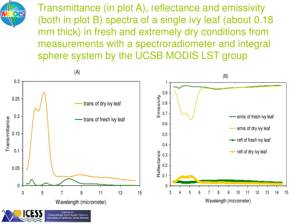 Transmittance (in plot A), reflectance and emissivity (both in plot B) spectra of a single ivy leaf (about 0.18 mm thick) in fresh and extremely dry conditions from measurements with a spectroradiometer and integral sphere system by the UCSB MODIS LST group