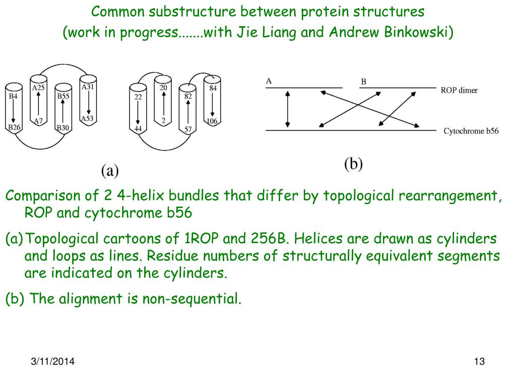 Common substructure between protein structures