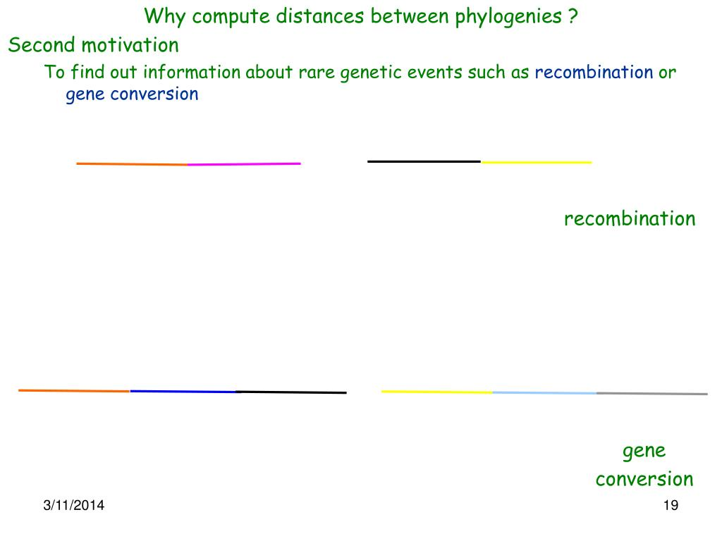 Why compute distances between phylogenies ?