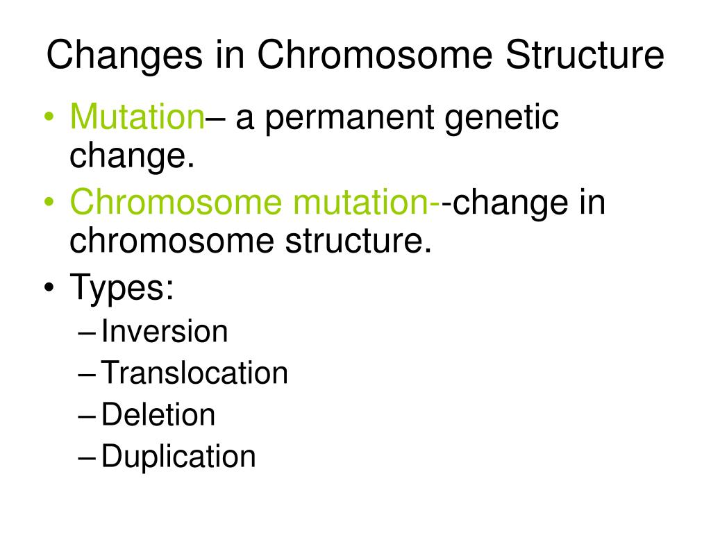 Changes in Chromosome Structure