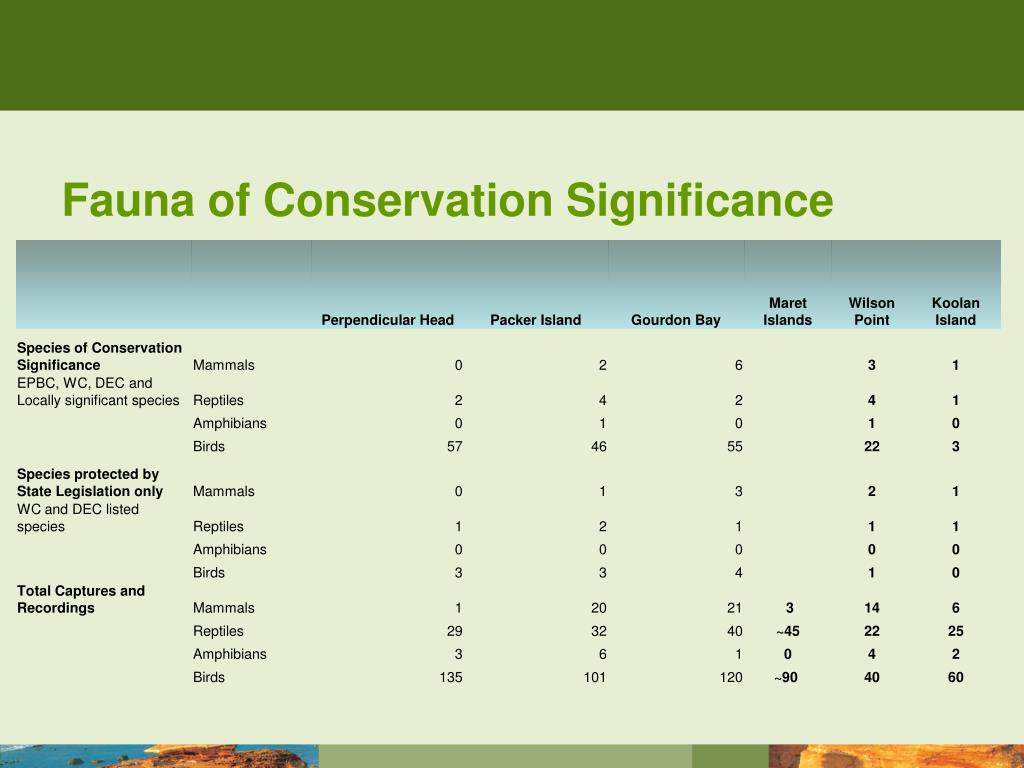 Fauna of Conservation Significance