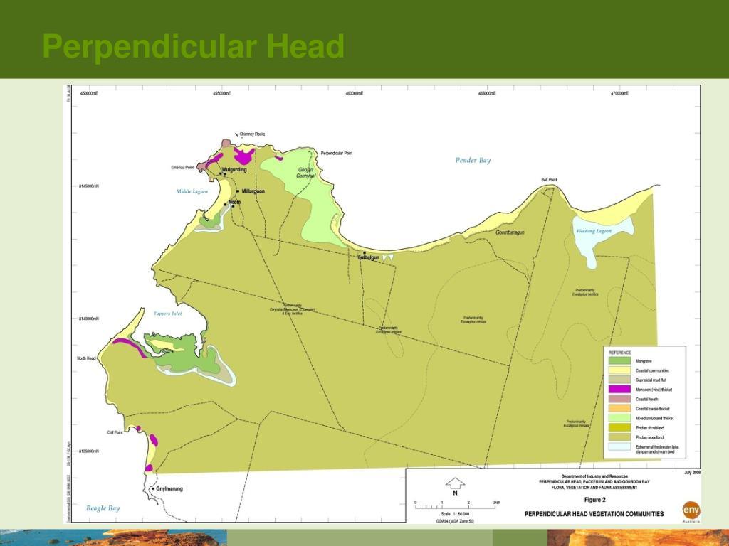 Perpendicular Head