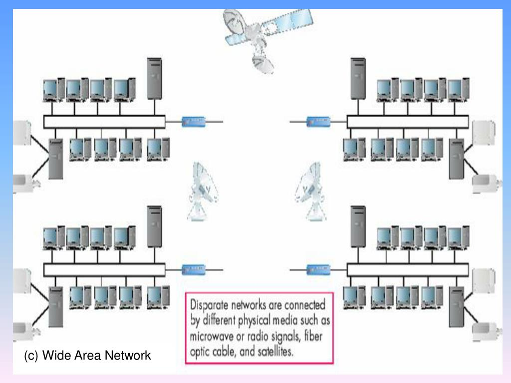 (c) Wide Area Network
