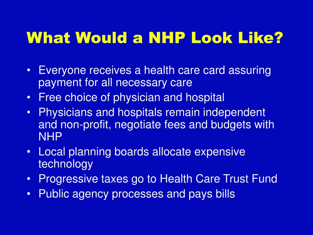What Would a NHP Look Like?