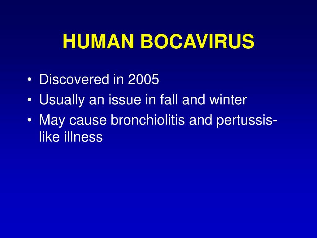HUMAN BOCAVIRUS