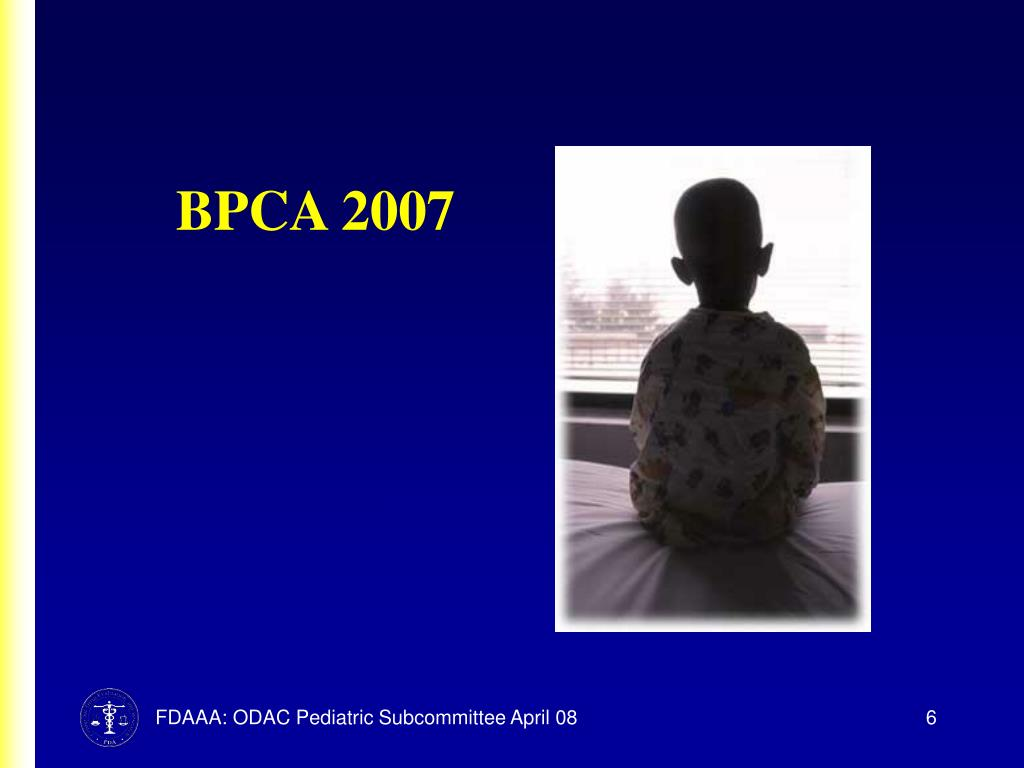 BPCA 2007