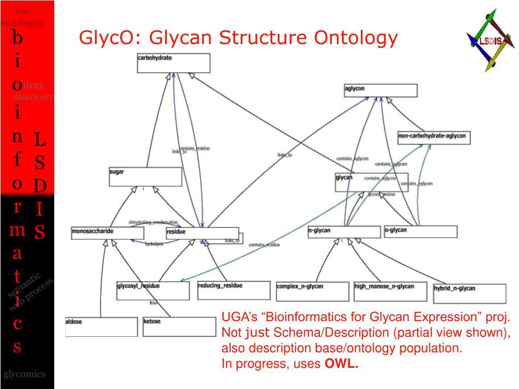GlycO: Glycan Structure Ontology