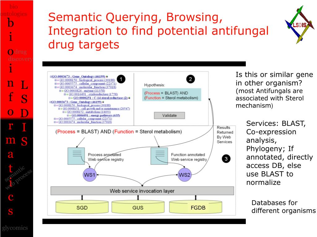 Semantic Querying, Browsing, Integration to find potential antifungal drug targets