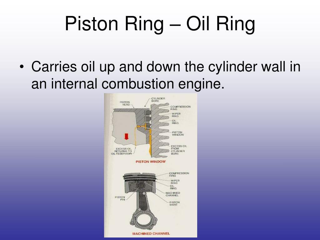 Piston Ring – Oil Ring