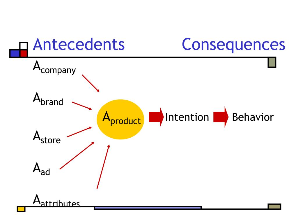 Antecedents		Consequences