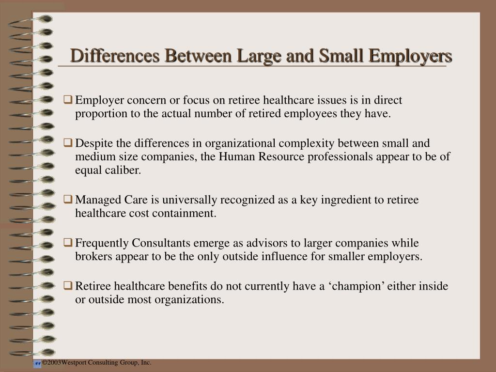 Differences Between Large and Small Employers