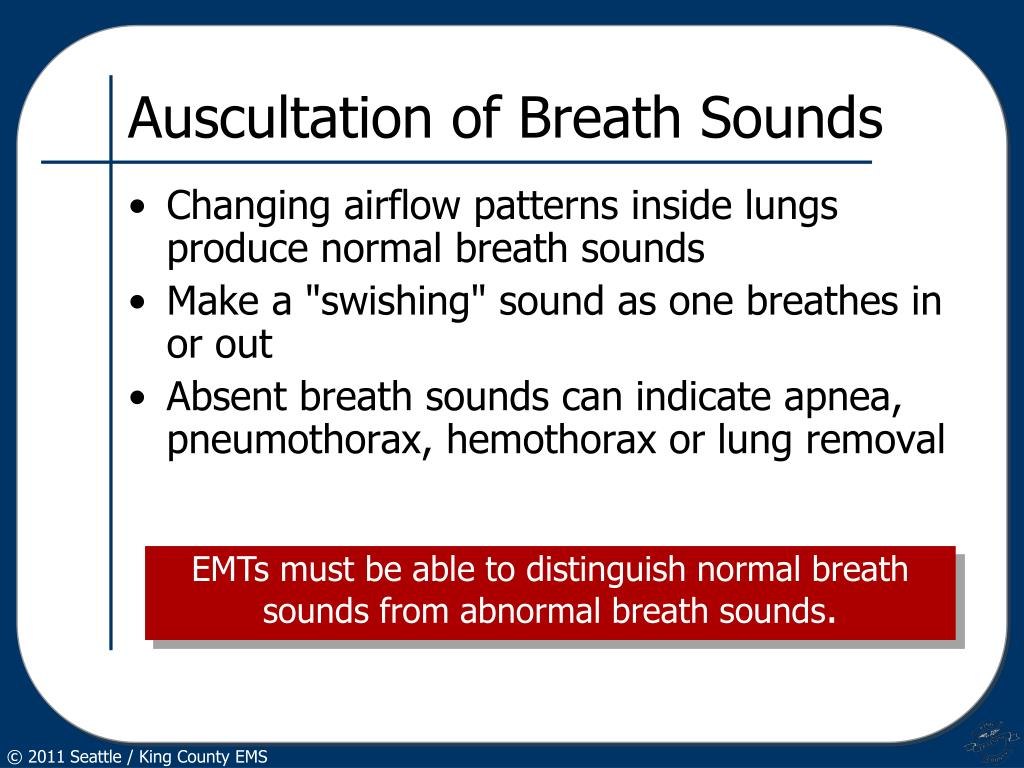 Auscultation of Breath Sounds