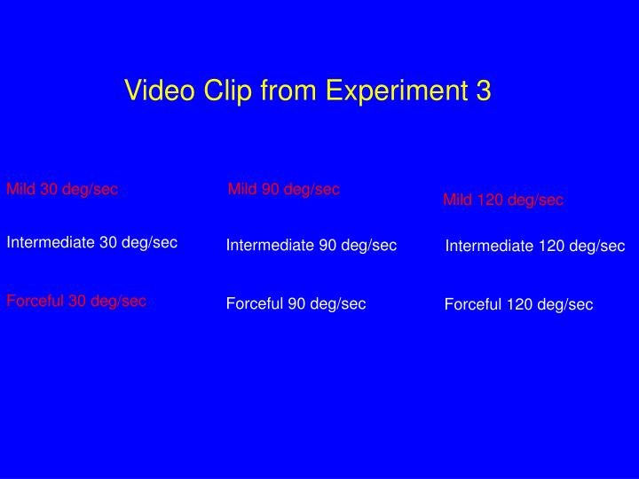 Video Clip from Experiment 3