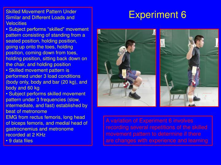 Skilled Movement Pattern Under Similar and Different Loads and Velocities